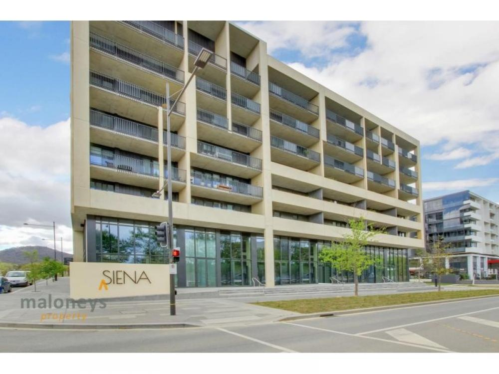 Executive Apartment in Brand New Complex - SIENNA
